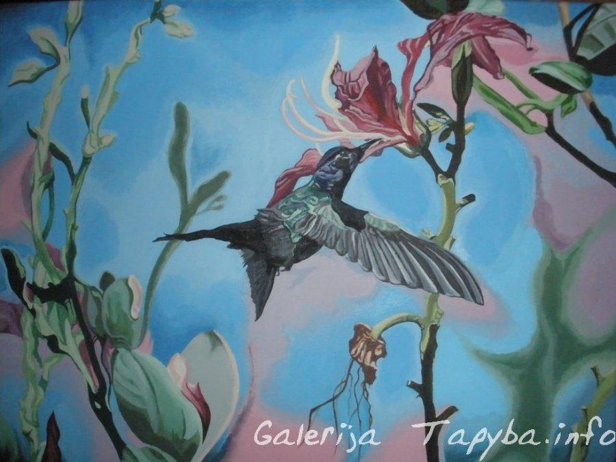 Kolibrio sparnelių plazdėjimas