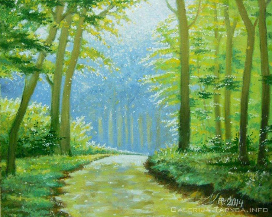Saulėtas miškas
