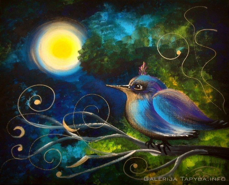 Nakties paukštė