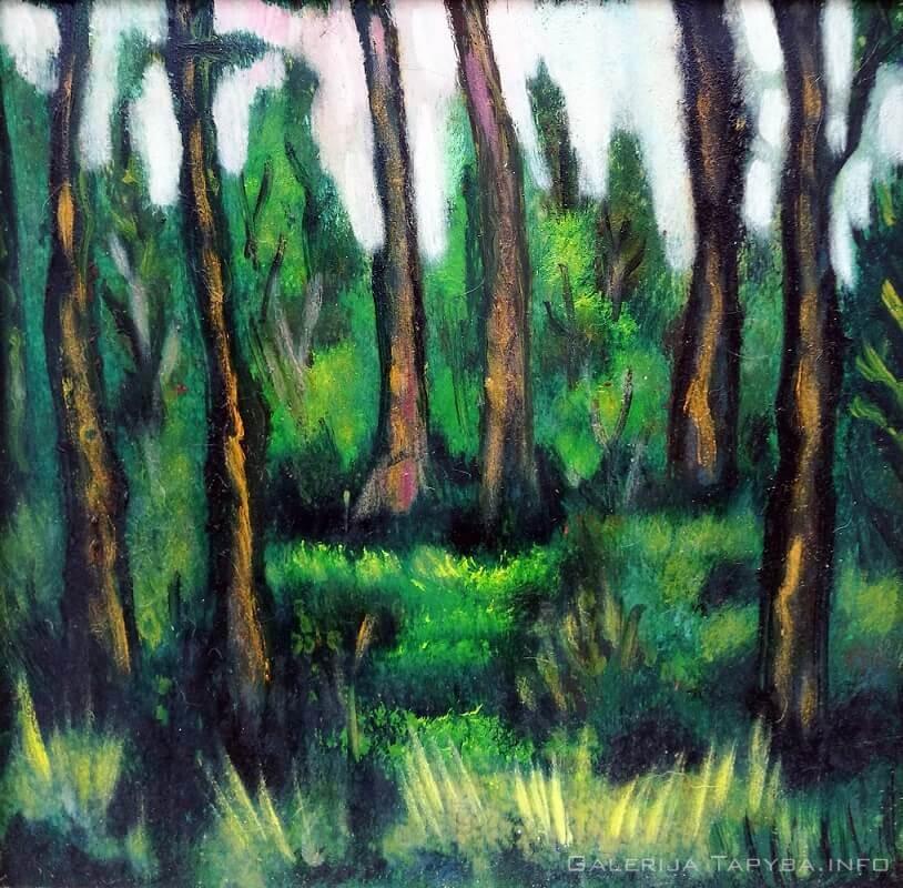 Miško paklotė