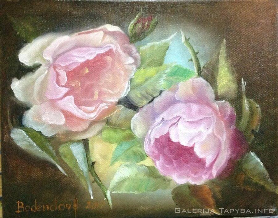 Senovinės rožės