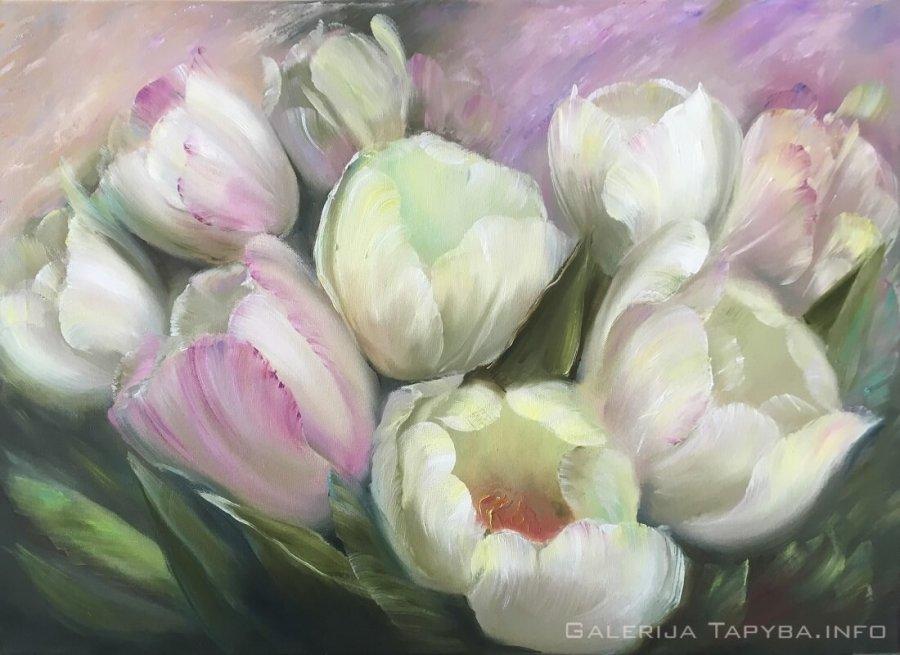 Pastelinės tulpės