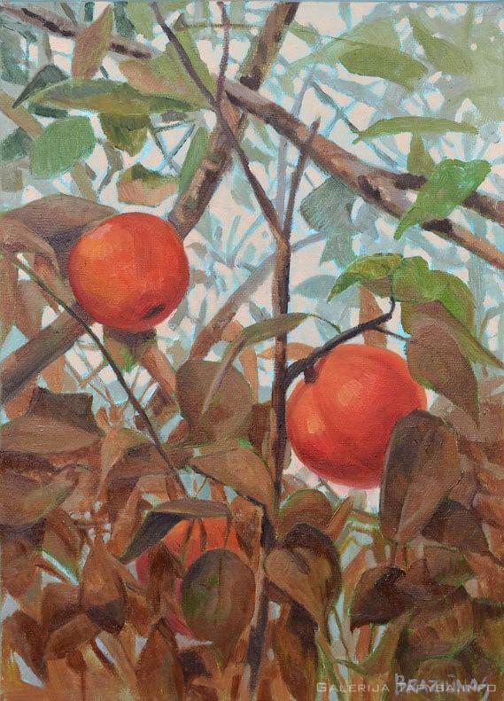 Du obuoliai