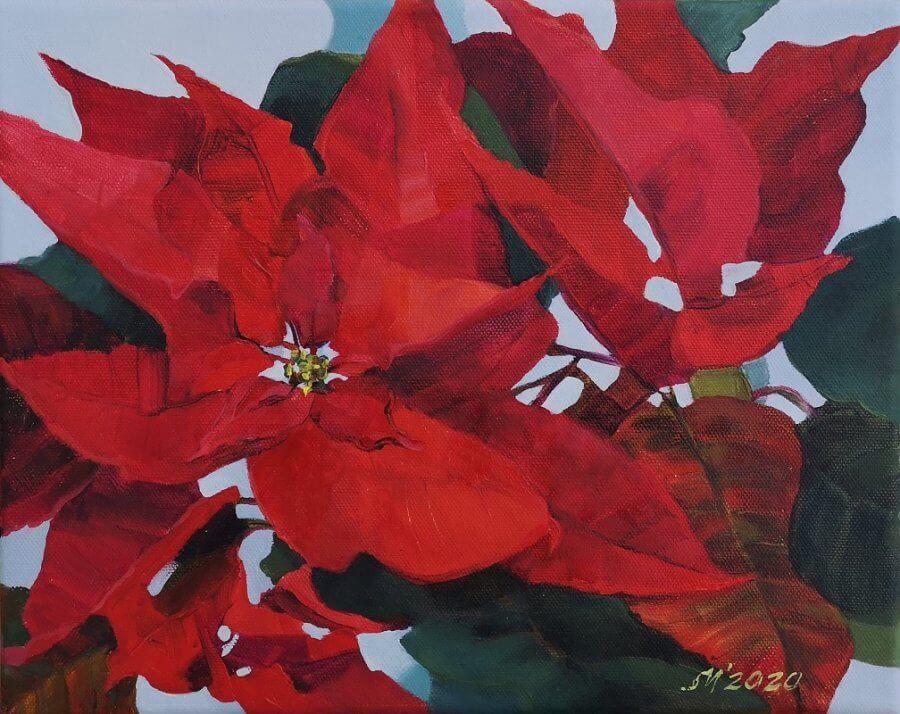 Raudona gėlė (Puansetija)