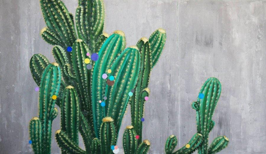 Kaktusai pražydo