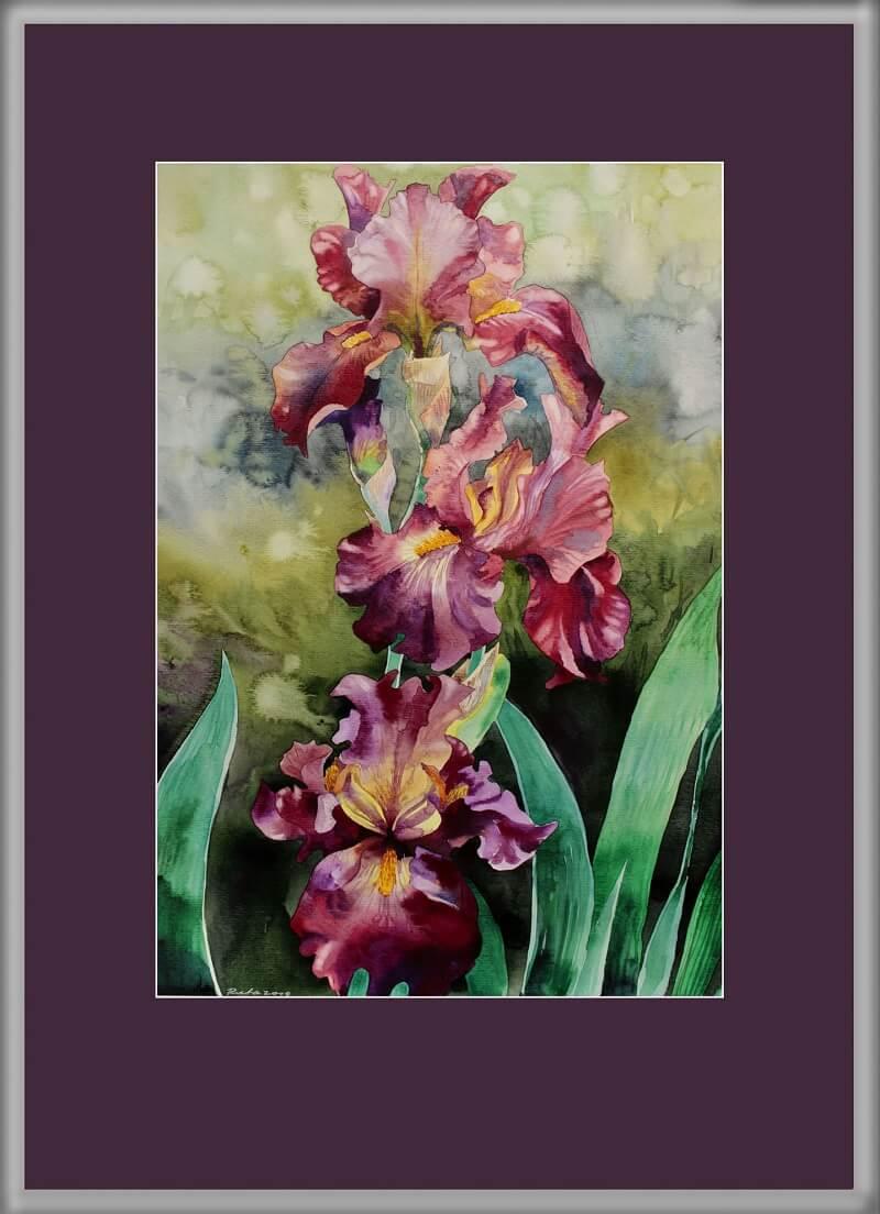 Irisai temstant